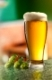 Glass of beer and hops on a Empty wooden table against green natural background