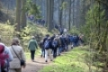 Wanderer im Silberbachtal (geplantes Nationalparkgebiet) / hikers in silver creek valley in Teutoburger Wald / Foto: Robert B. Fishman, ecomedia, 15.4.2012