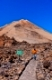 Landscape on the volcano Teide in Tenerife island - Canary Spain