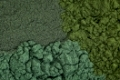 background of chlorella, spirulina and blue-green  sea algae supplement powder