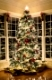 Christmas tree with gold wrapped gifts and presents and lights reflecting in windows around the tree in modern home