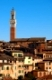 Cityscape of Siena with a magnificient tower in Tuscany, Italy.