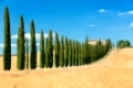 View the actual landscape of Tuscany, Italy
