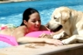 Junge Frau, blonder Labrador, Retriever, Schwimmbad, young woman with Labrador Retriever, swimming-pool